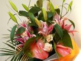 Gardénia Virágüzlet
